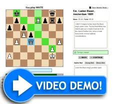 Online schaken leren