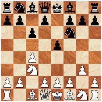 schaken tegen computer Chessbase Fritz